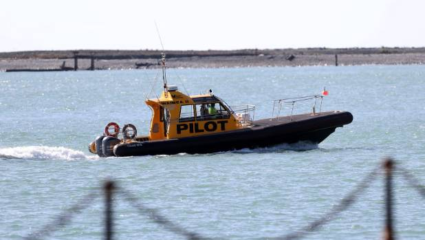A Port of Auckland pilot boat, like this one, was believed to have struck Leslie Gelberger.