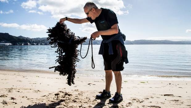 Martin Bulmer shows off his dreadlocked Hungarian Puli, Hugo, aged 5, at the Big Dog Walk in Wellington.