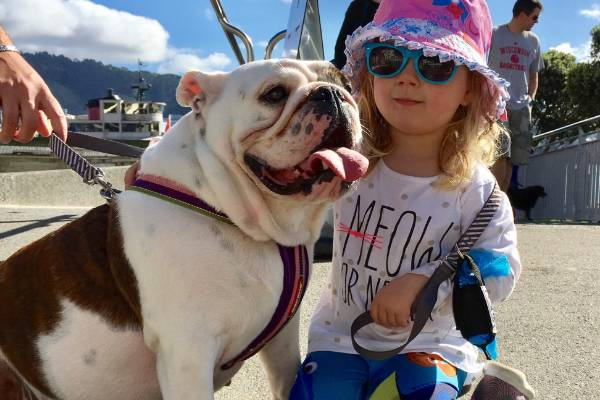 Isla, 3, wore her most subversive skivvy to take Nova, 1, out on the Wellington waterfront for the capital's big dog walk.
