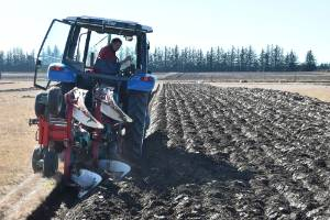 Bob Mehrtens, winner of the reversible competition at the NZ Ploughing contest at Kirwee, Canterbury