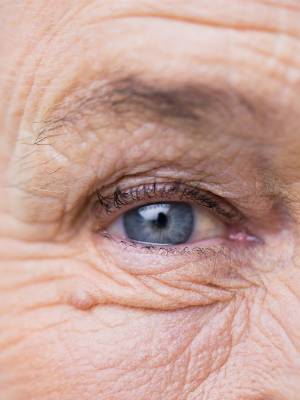 The ophthalmology service at Nelson Marlborough Health has been remodelled which has cut the waiting list for those ...