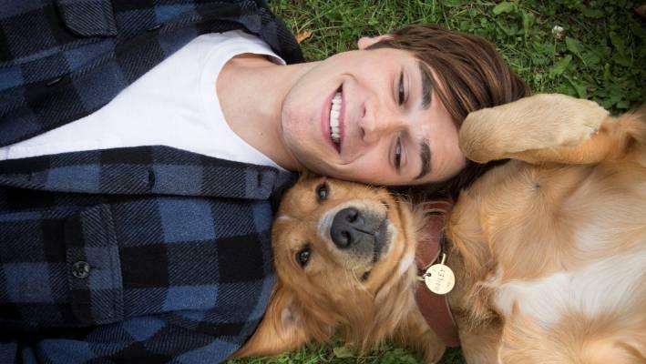the dog lover film