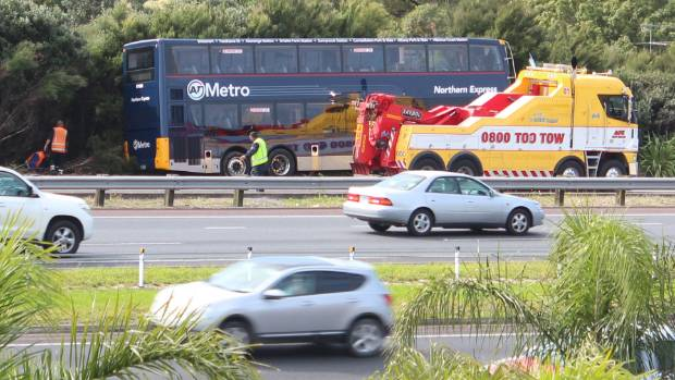 Bee sting blamed for Auckland motorway bus crash