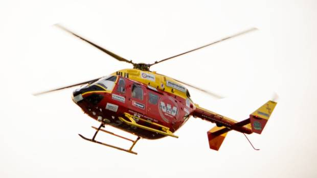 Wallace's stepfather was airlifted to Auckland City Hospital after the attack. (FILE PHOTO)
