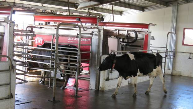 A third of New Zealand's  farms with automatic milking systems (AMS) milk less than 200 cows.