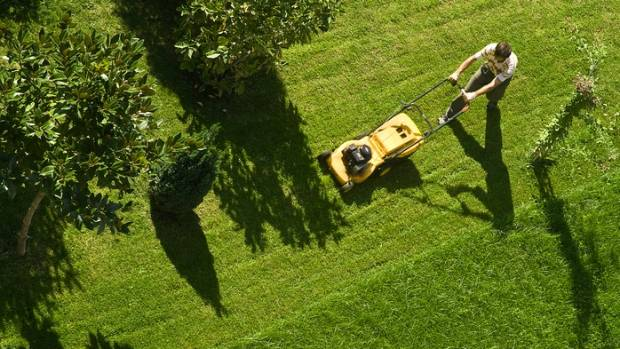Lawn mowing could become an archaic activity.