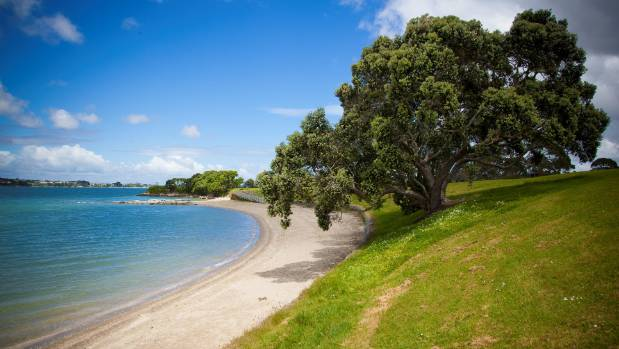 The listing comes after the government announced in December that it will change the status of Pt England Reserve so ...