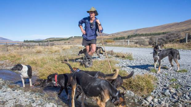 How much would you earn working on a farm?   Stuff co nz