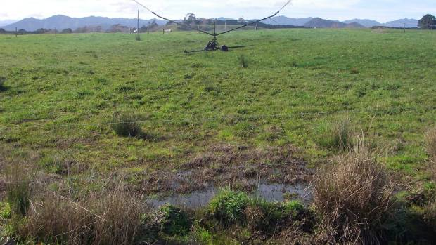 Evidential photos used to show the impact the unsupervised, travelling irrigator had on the environment at Kahu Ma Farms ...