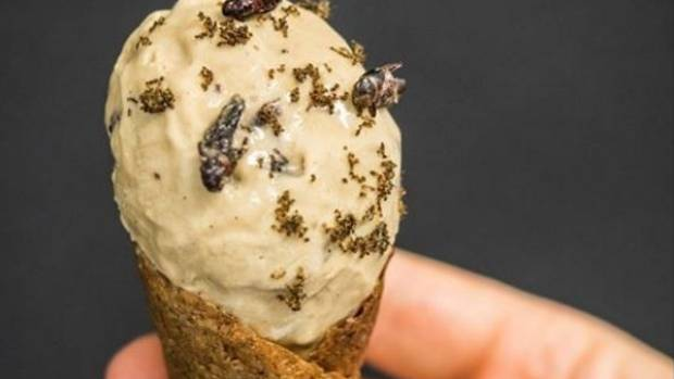 Dunedin Polytechnic Food Design Institute student Funn Boyle created an insect ice cream in 2016.