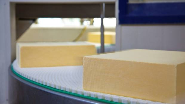 Fonterra is one of the only dairy companies that sources its cheese starters from its own library. Cheese at Fonterra's ...