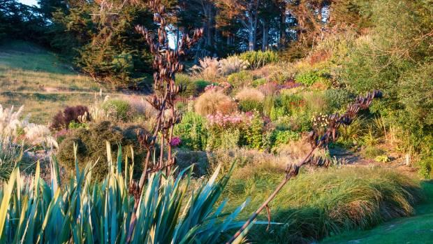 The zigzag hillside garden was planted in bold drifts inspired by the work of Dutch perennial maestro Piet Oudolf: ...
