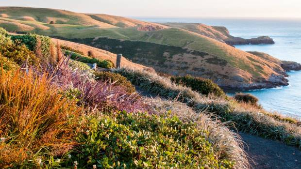 Jill and Richard Simpson's Fishermans Bay Garden on Banks Peninsula is open to visitors by appointment.