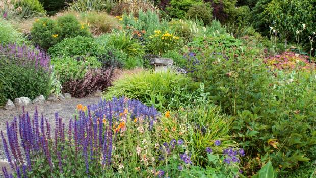 """Jill's vision for the zigzag garden has taken eight years to realise: """"It's a huge area and it would have been ..."""
