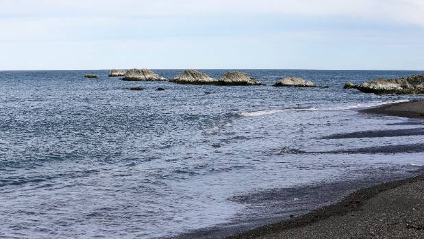 The November earthquake has caused the seabed to rise at Ward Beach.