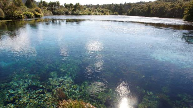Te Waikoropupu Springs is the largest cold water springs in the southern hemisphere and contains some of the clearest ...