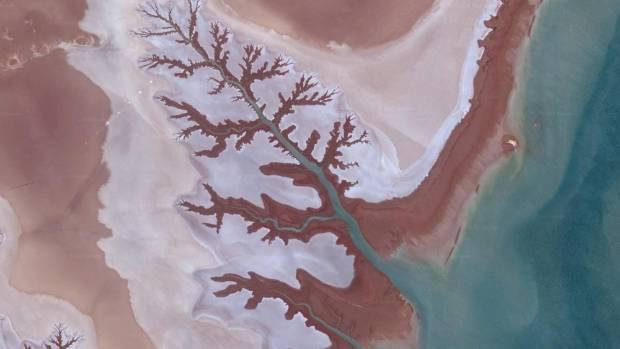 Shadegan Wetlands