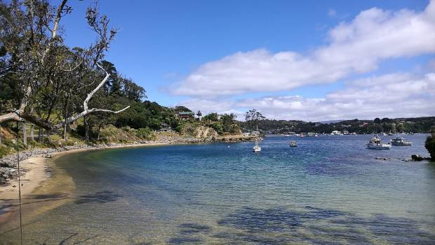 Looking back at Oban on Stewart Island from Little Bay on Christmas day..... What a wonderful piece of paradise we live in.
