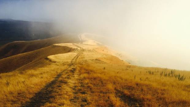 This image was taken on an early morning Sunday run in January, descending Mt Vernon in the Wither Hills on the ...