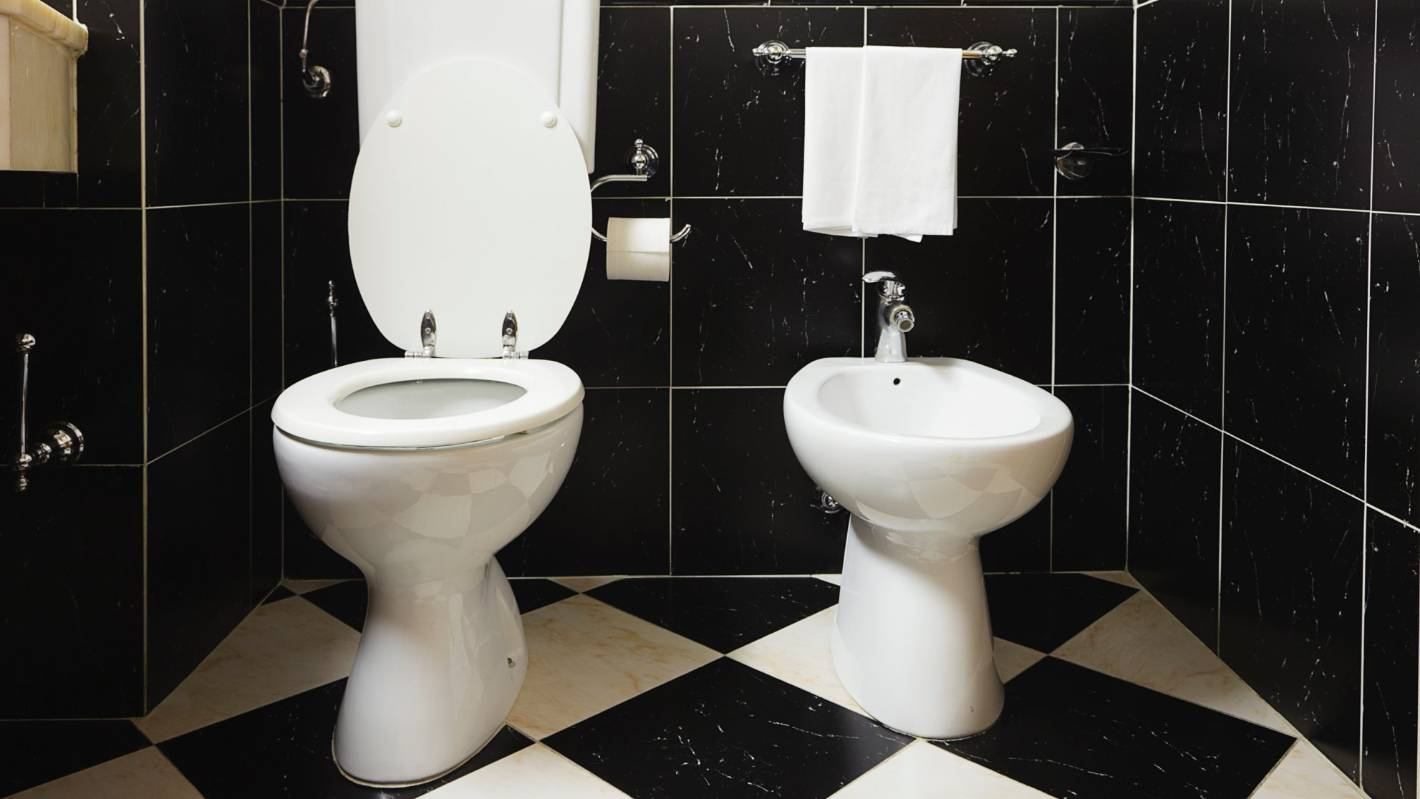 To Bidet Or Not To Bidet, That Is The Bathroom Question
