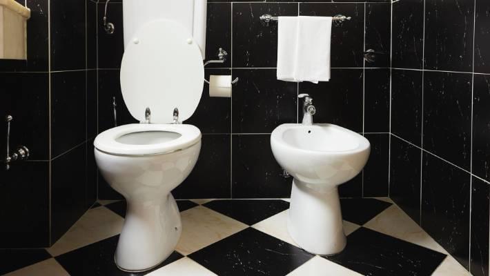Sensational To Bidet Or Not To Bidet That Is The Bathroom Question Creativecarmelina Interior Chair Design Creativecarmelinacom