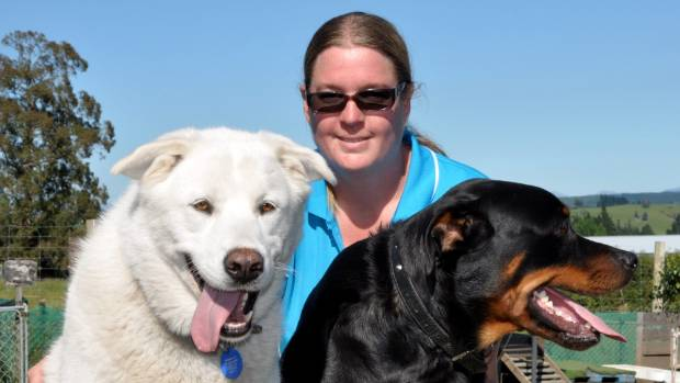 Steph Scurr with Doggy Daycare visitors Jake and Duke.