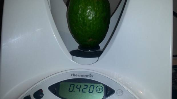 The freshly picked feijoa weighs in at 420g.