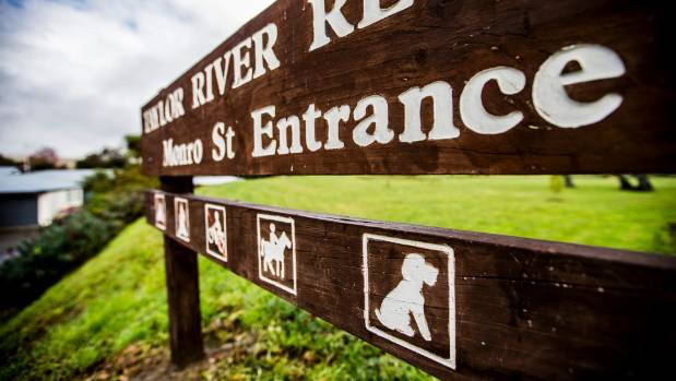 Dogs are allowed at the Taylor River Reserve, in Blenheim, but should they be on a lead?
