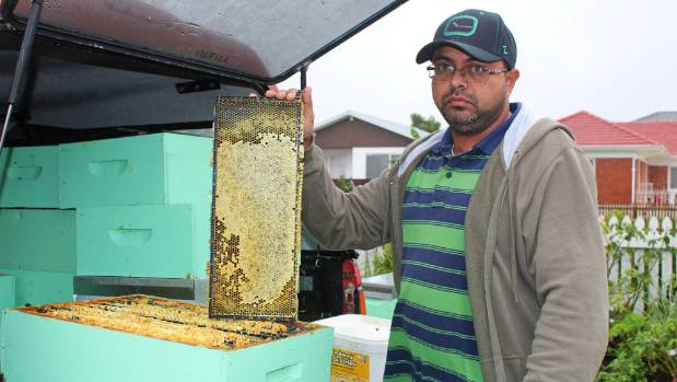 Ibrahim Mohammed is a registered beekeeper in South-East Auckland and was first to inspect the poisoned hives.