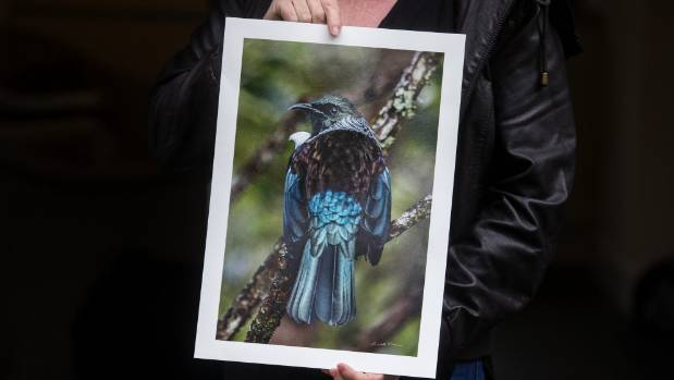 This tui picture is Wilson's favourite image.