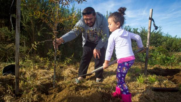 Registrations are now open for Papakura Children's Forest planting day.