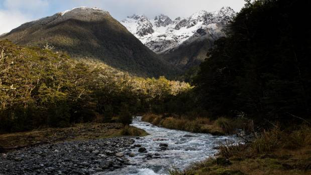A tributary in the Travers Valley, Nelson Lakes National Park.