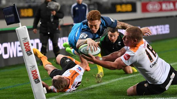 The Cheetahs proved reasonable opposition for the Blues last week.