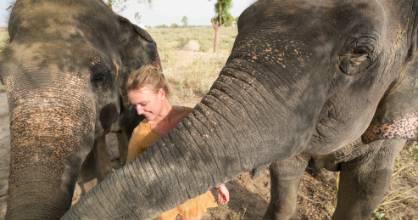 Travellers are starting to become more aware of the ethics of elephant riding.