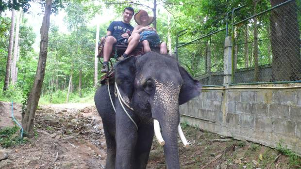 We rode an elephant back in 2012 - oblivious to the torture that goes on to make it possible.