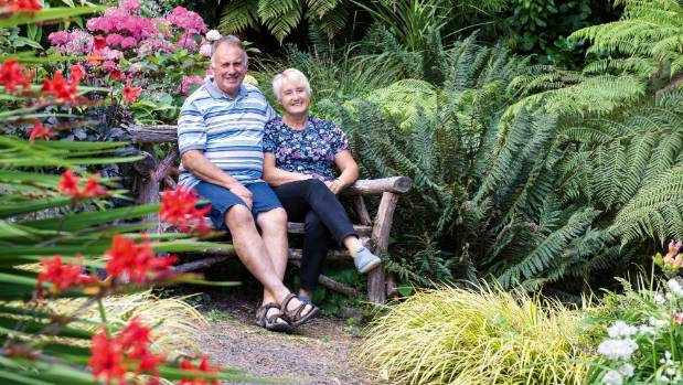 Richard and Jill Simpson relax on a macrocarpa seat at the edge of the spring-fed fern gully.