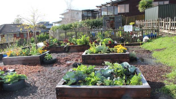 Forrest Hill School's Garden to Table project has produced a flourishing vegetable garden.