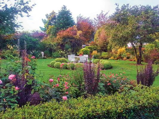 "Sally has planted a colour wheel, with colours in each ""spoke"" section. The topiary balls and garden chairs mark the ..."