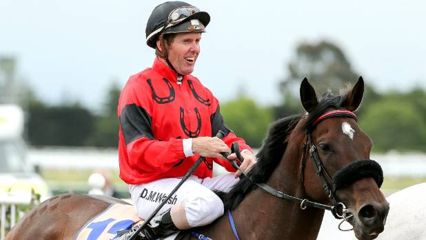 Former jockey David Walsh will begin a full-time role working with New Zealand Thoroughbred Racing next month.