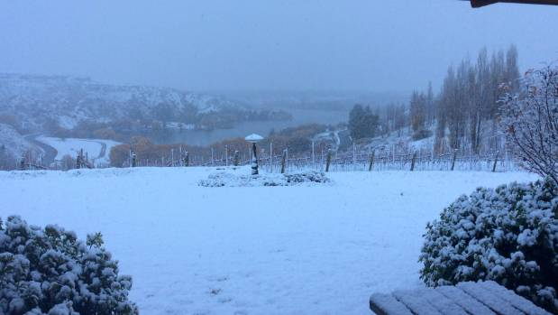 Snow falls in Bannockburn, near Cromwell.
