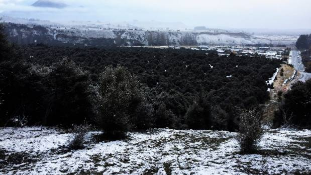 Albert Town's Hikuwai Reserve with a picturesque dusting of snow on Saturday morning.