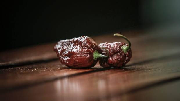 The big black mama is a hybrid chilli that reaches 1.4 million Scoville Heat Units.