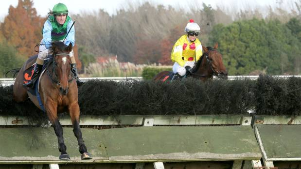 The Big Opal and Shaun Fannin on their way to victory in the Waikato Steeplechase.