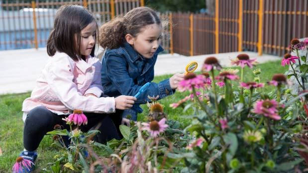 More than five years after it was first mooted, a new Children's Garden at Wellington Botanic Garden is finally set to ...