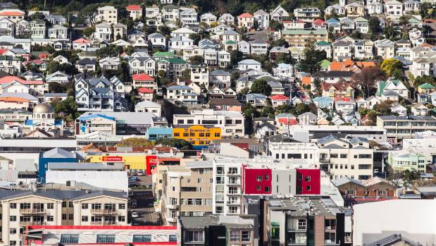 Wellington's housing density could change in suburban areas if the Housing Forum recommendations are adopted.