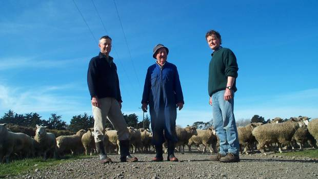 Family affair: Quentin (left), John and Peter (right) Withell from Brookside are sheep and mixed cropping farmers at ...