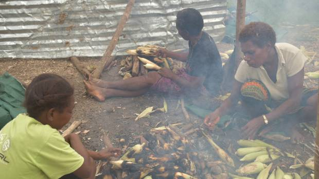 Women cooking maize on a fire to sell at their roadside stall.