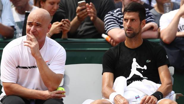 Djokovic sinks Ramos-Vinolas to reach Paris quarters