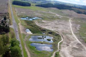 Landcorp's forestry to pasture conversion near Taupo saw it come under fire and eventually change course.