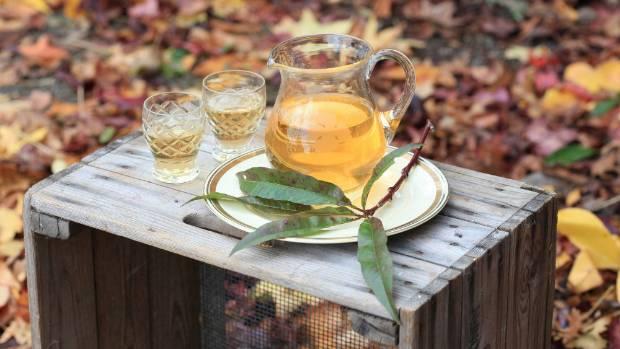 Lynda Hallinan's peach leaf liqueur.